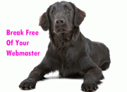 Break free of your webmaster